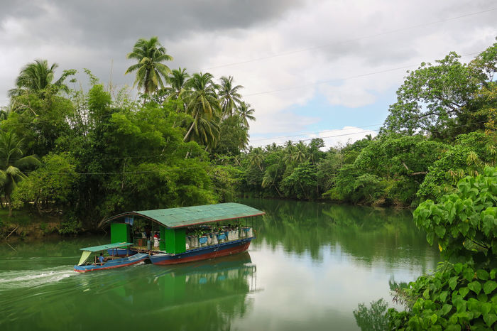Houseboat heading down the Loboc jungle river in Bohol Bohol Calm Water Coconut Trees Equator Exotic Filipino Filipino Culture Greenery Houseboat Humid Humidity It's More Fun In The Philippines Jungle Life Jungle Plants Jungle River Loboc River Philippines Philippines Photos Pinoy River Scene Steamy Sweltering Tropic Tropics Visayas