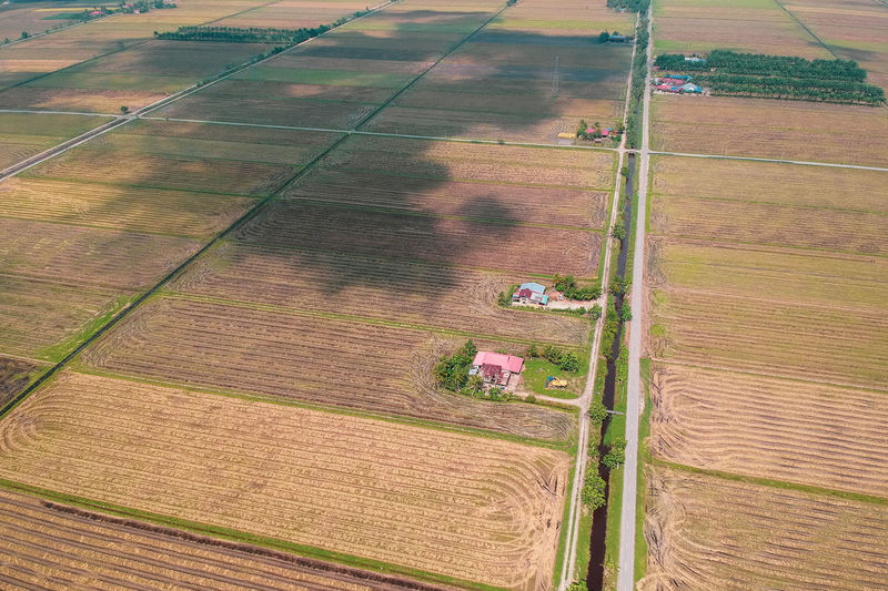 Combine Harvester Working Cereal Plant Rural Scene Agriculture Aerial View Above Field Agricultural Machinery High Angle View