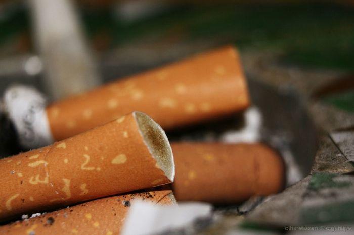 beatas Cigarette  Ash Ashtray  Macro Macro Photography