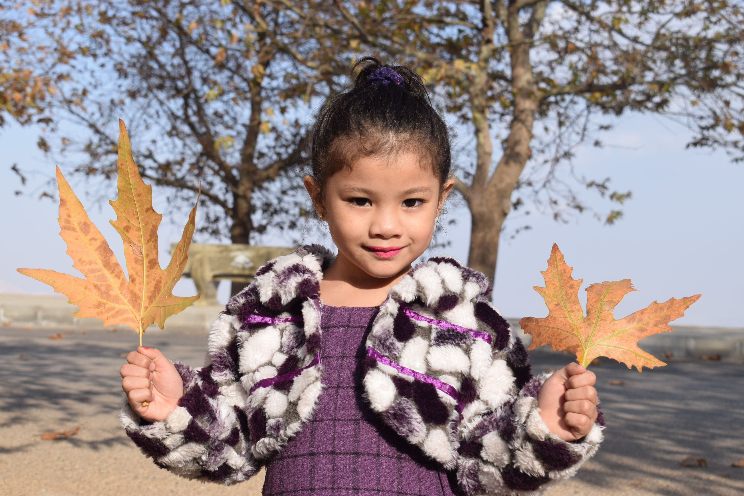 autumn, leaf, change, maple leaf, nature, front view, childhood, outdoors, tree, day, focus on foreground, one person, holding, close-up, headshot, maple, girls, real people, beauty in nature, human hand, people