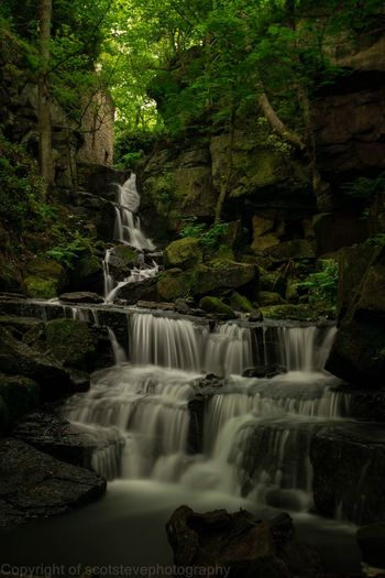 A stunning waterfall Waterfall Scenics Motion Water Long Exposure Nature Beauty In Nature No People Environment Forest Outdoors Tree Power In Nature Day EyeEm Best Shots The Great Outdoors - 2017 EyeEm Awards