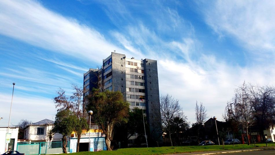 Chile Santiago De Chile Santiago Urban City Check This Out Urbanphotography Trees Silhouettes Built Structure Building Trees Urban Exploration Urban Photography Perspective Clouds Clouds And Sky Trees And Sky Urban Escape