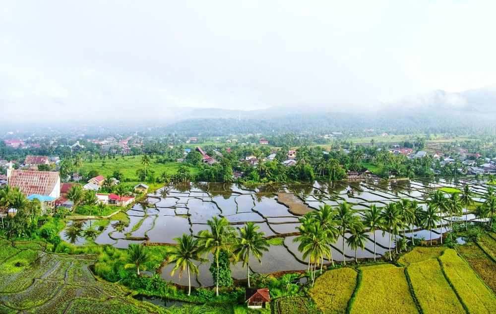 village viewing EyeEm Best Shots EyeEm Selects EyeEmNewHere Village Aerial View Dronephotography Drone  DJI X Eyeem Outdoors Nature Day Landscape Beauty In Nature Agriculture No People Rural Scene An Eye For Travel
