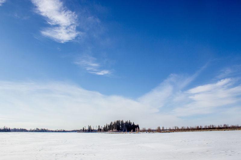 Astotin Lake Blackandwhite Cloud - Sky Cold Temperature Day Elk Island Island, Landscape National Park Nature No People Outdoors Sky Snow Taking Photos Tree Winter