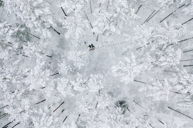 Aerial view of people lying down on snow