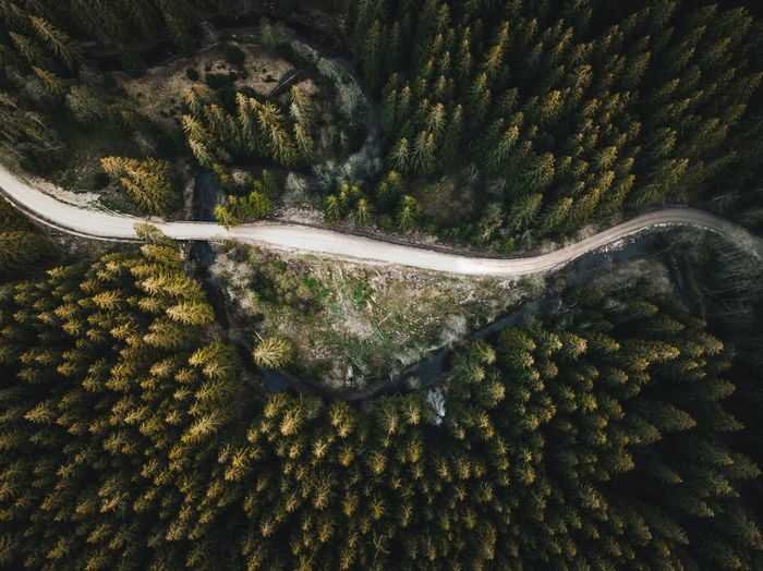 Evergreen Tree Above Aerial Photography Aerial View Aerialphotography Beauty In Nature Day Dronephotography Environment Growth High Angle View Landscape Mode Of Transportation Mountain Nature No People Non-urban Scene Outdoors Plant Road Scenics - Nature Tranquil Scene Tranquility Transportation Tree