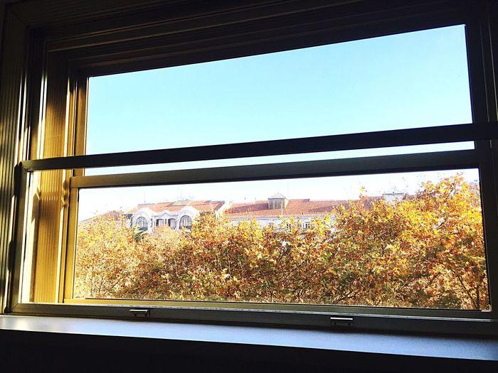 Good Morning Christmas Day 2014 Lisboa