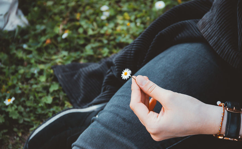 Cropped image of woman holding flower on field