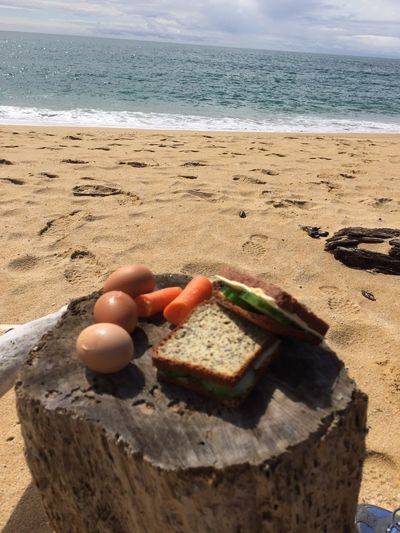 Nature picnic. lonley beach in the jungle Sea Beach Food Food And Drink Water Freshness Outdoors Horizon Over Water Nature Sand No People Day Close-up