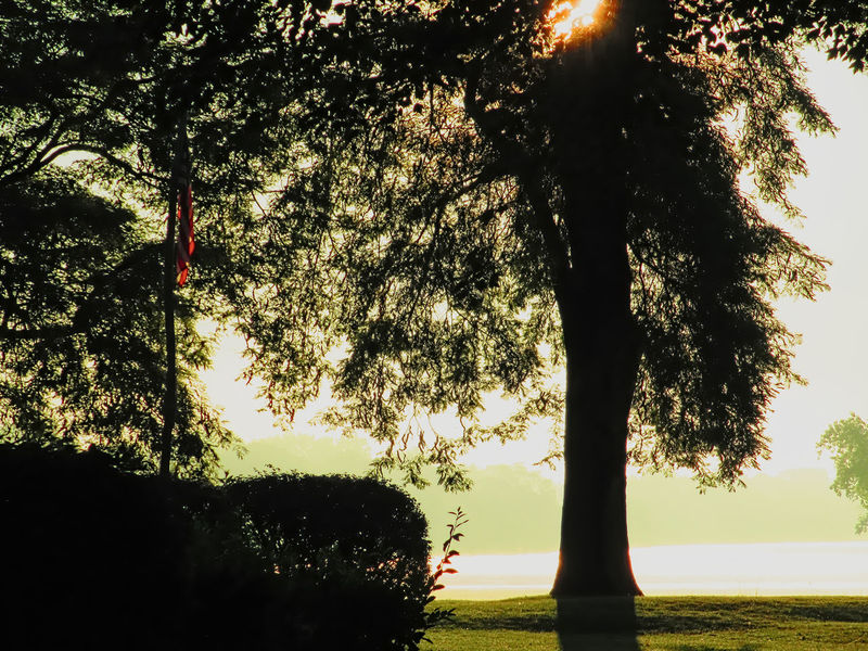 Aulglaize River Flag Pole Fort Defiance Maumee River Patriotism Beauty In Nature Day Flag Grass Growth Nature No People Outdoors Scenics Silhouette Sky Sunlight Sunset Tranquil Scene Tranquility Tree Tree Trunk Water in Defiance, United States The Week On EyeEm