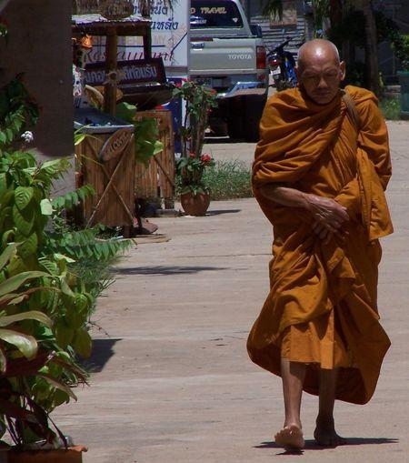 Pensive monk Bare Tree Barefoot Buddhist Buddhist Monks Day Monkey Robe Sunset That's Me Walking