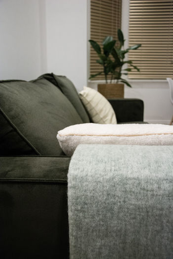 Furniture Living Room Sofa Domestic Room Indoors  Home Interior Pillow Comfortable Wealth Relaxation Luxury Plant No People Cushion Stuffed Armchair Seat Chair Absence Cozy Clean Houseplant Coffee Table
