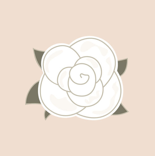 New art in shop : Creative hand-drawing of stylish Syria rose. Colors : brown, white. Authors artwork. 30 40 70 Beauty In Nature Brown Cute Design Designers DESIGNSHOP Hand Handdrawing Luxury Quality Vintage