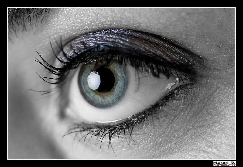 Detail Eye Eyedetails Eyelash Eyesight Human Eye Iris Iris - Eye