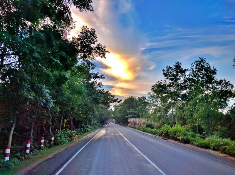 Tree Road The Way Forward Road Marking Transportation Diminishing Perspective Sky No People Nature Scenics Cloud - Sky Tranquil Scene Street Tranquility Beauty In Nature Outdoors Landscape Growth Day Sunset @anickchowdhurymp EyeEmNewHere Beauty Of Bangladesh Eyeembangladesh Nexus5xphotography
