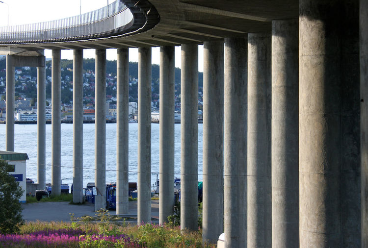 Curved row of pillars and fireweed flower meadow under the Tromsøbrua bridge in Tromso, Norway Architectural Column Architecture Bent Bridge Bruvegen Built Structure Concrete Curved Row Of Pillars Diagonal Down Ferroconcrete Fireweed Fjord In A Row Modern Monument Norway Reinforced River Statics Structure SuicideGirls Tromsobrua Tromsø Under