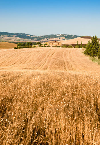 Tuscany, Italy Hills Nature Sky And Clouds Travel Tree Tuscany View Italy Landscape Siena Sky Summer Village