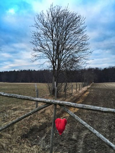 From Placid Suburbs With Love - Gdynia 11 February 2016 ( IPhone 6+ ) IPhoneography Iphone 6 Plus Gdynia Poland EyeEmBestPics EyeEm Gallery EyeEm Best Shots EyeEm Masterclass EyeEm Best Edits Landscape_Collection Landscape Conceptual Heart St.Valantain's Day