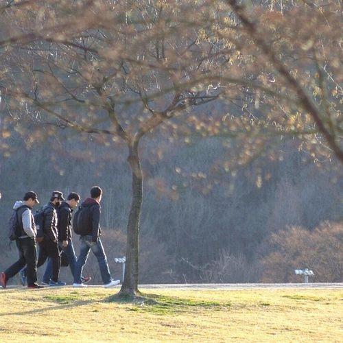 Robin_theme 함께 걷는 봄 즐거운 금요일 되셔요! Walk together in spring TGIF! 서울대학교 서울대