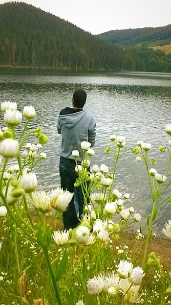 Gras Water Lake Nature Growth Beauty In Nature Plant Tranquility Flower Tranquil Scene Scenics Outdoors Day One Person People Adult
