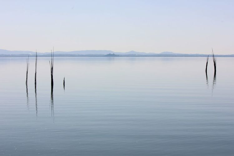 Water Tranquility Tranquil Scene Waterfront Scenics - Nature Beauty In Nature Reflection Sky Nature Idyllic Lake Day Fog Non-urban Scene No People Outdoors Wooden Post Less Is More Light Blue Color