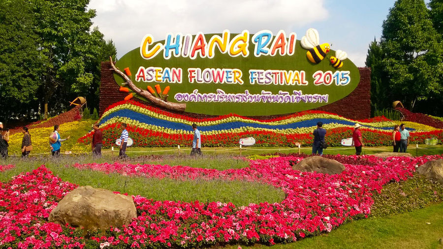 Chiang Rai Asean Flower Festival 2015 EyeEmNewHere Red Rock Sunny Tourist Beauty In Nature Begonia Board Colorful Day Flag Flower Garden Multi Colored Nature Outdoors Red Sulvia Sky Text Tree