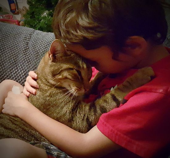 A boy and his cat. Love Comfort Animal Lover Simple Things Cat