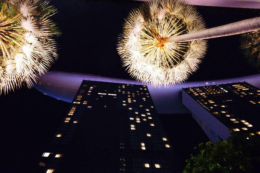 Singapore by night!