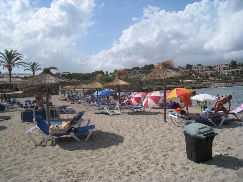 Mallorca Beach Strand Palms Palmen Meer Meer Und Strand Himmel Blue Sky Sonnenschirme Liegestühle