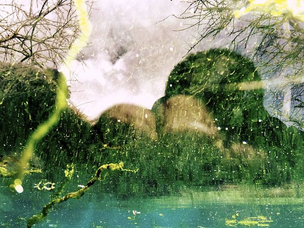 Green Nature Water Reflections Landscape Phsycedelic Surreal Algae Reflection Underwater Trees Sky And Clouds just one Shot from underwater, confusing Strange Reflexionswinkel ... The Great Outdoors - 2016 EyeEm Awards Nature Photography Natures Diversities Nature's Diversities Pivotal Ideas