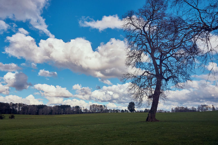Countryside... EyeEmNewHere Farm Bare Tree Beauty In Nature Cloud - Sky Day Environment Field Grass Land Landscape Mountain Nature No People Non-urban Scene Outdoors Plant Scenics Scenics - Nature Sky Tourism Tranquil Scene Tranquility Travel Destinations Tree
