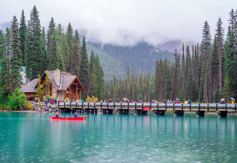 Alberta, Canada Beauty In Nature Day Emerald Lake Forest Lake Mountain Nature No People Outdoors Rocky Mountains Scenics Sky Tranquility Travel Destinations Tree Vacations Water Yoho National Park