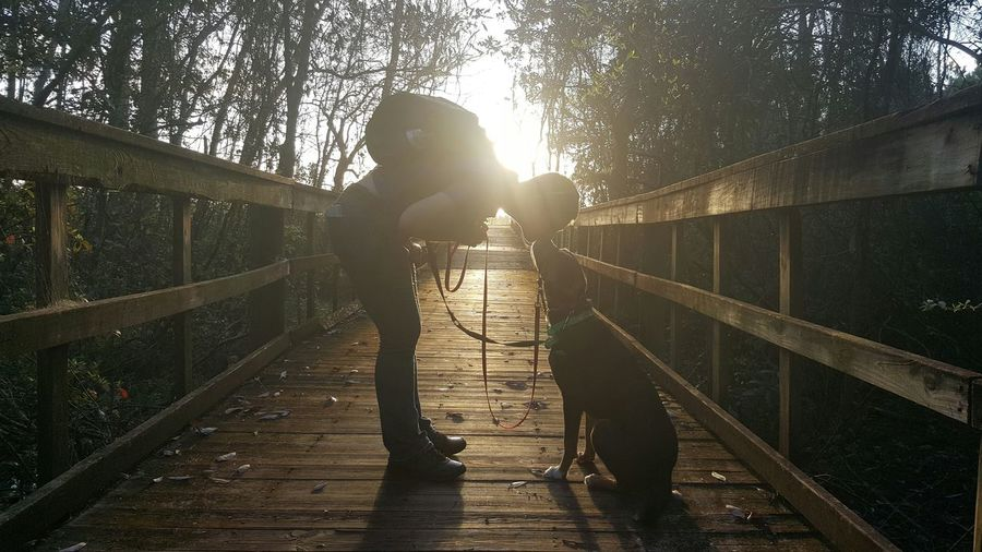 Side view of man kissing dog on footbridge