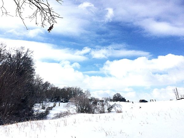 Snowstorm2016 Tree Trees Field Beautiful Beautiful Day Sky Clouds Clouds And Sky Eyemnaturelover Snow Snowday Snowy Ice Nature Mothernature Let It Snow Iced Over EyeEm Nature Lover Nature_collection That Sky Tho!
