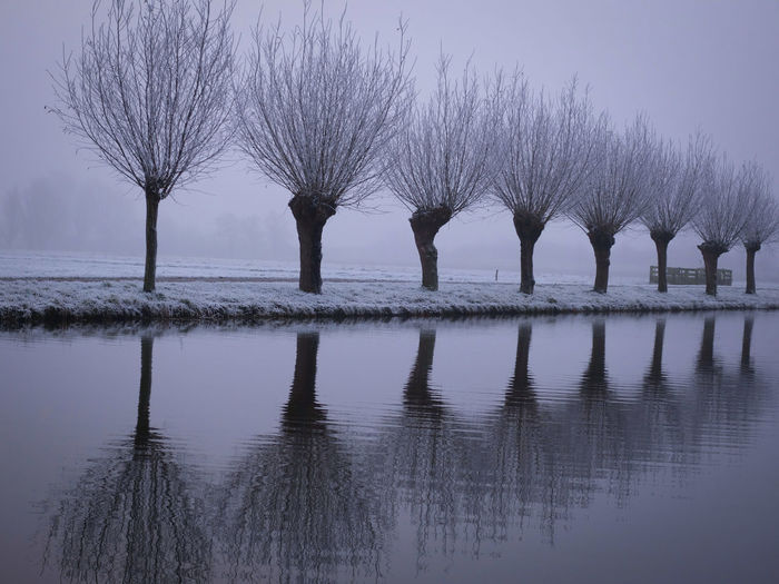 Reflection Sky Water Nature Purple Tree Lake No People Outdoors Scenics Horizon Over Water Day Maasland Frost