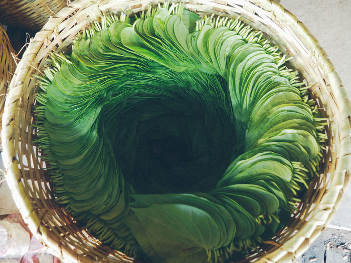 High Angle View Of Betel Nut Leaves In Basket