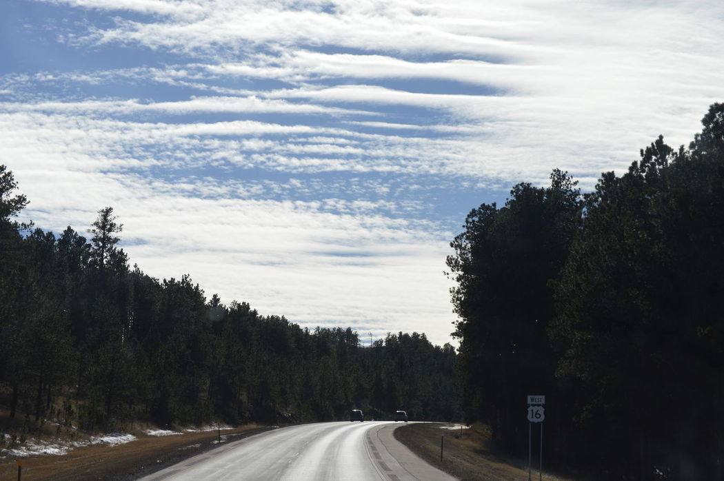 Road The Way Forward Tree Transportation Cloud - Sky Nature Sky No People Beauty In Nature Day Outdoors Scenics EyeEm Gallery Eye4photography  Eyem Best Shots Ontheroadagain Travel Fresh On Eyeem  Mountains Beauty In Nature Tranquil Scene Eyemmarket Southdakota Mountain Skyview