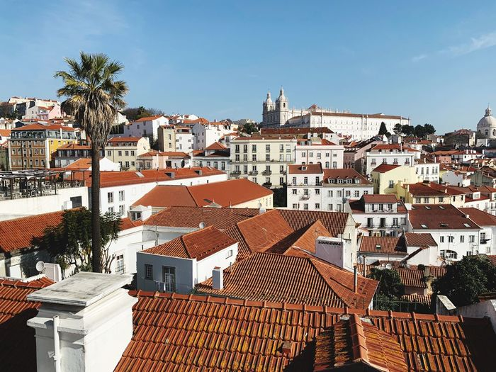 Lisbon Lisboa Lisboa Portugal Lisbon - Portugal Portugal Architecture Building Exterior Built Structure Building Roof City Residential District Tree Sky Palm Tree Nature House Tropical Climate Crowded Roof Tile Sunlight Day Town Community Crowd Outdoors TOWNSCAPE Cityscape