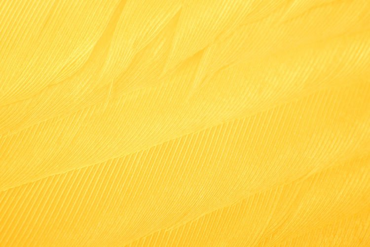 Feather yellow textured background