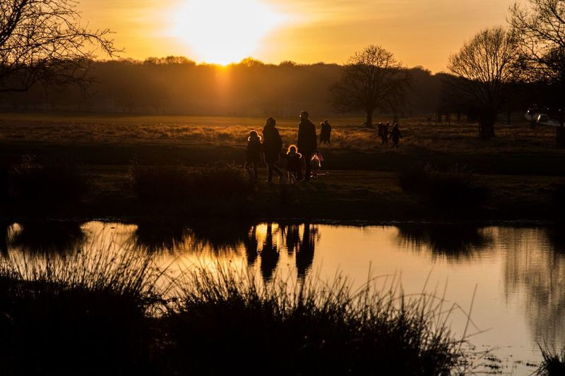 In harmony with Nature EyEmNewHere EyeEm Nature Lover Into The Wild London Nature Orange Reflection Richmond Park, London Sunset_collection Day Eyem Best Shots Eyemphotography Lake Nature Outdoors Silhouette Sky Sunset