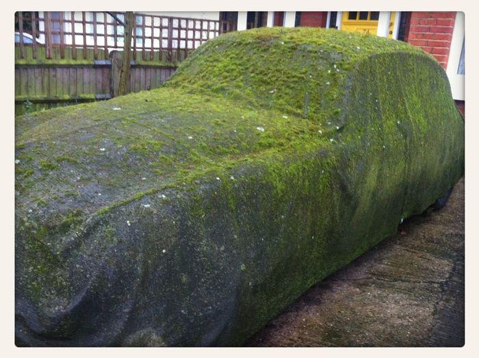 I think I'll start a Living Cars album.. Quiz Night... Whats Under The Tarp??? Living Car