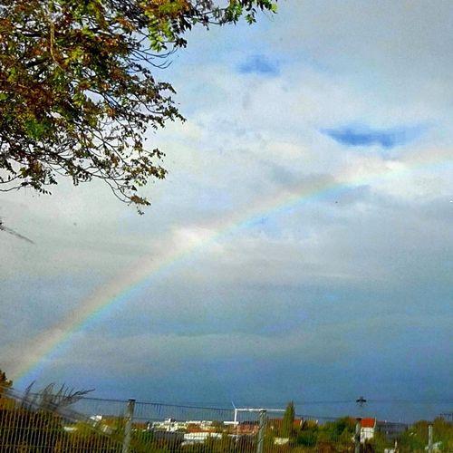 Regenbogen Hollidays