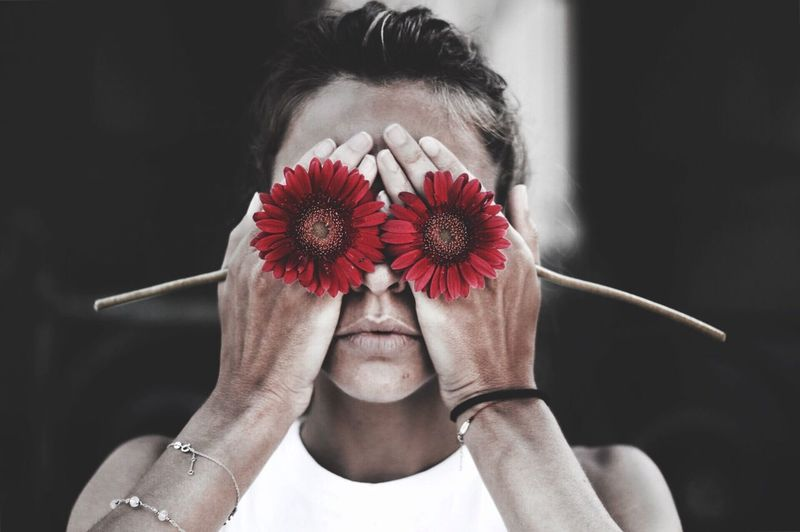 Close-up of woman covering eyes with red gerbera daisies