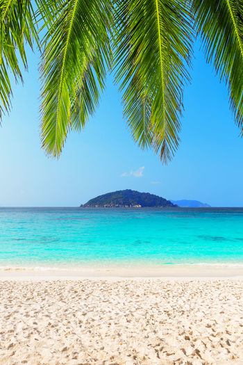 Beautiful beach and blue sky in similan islands, thailand. vacation holidays background wallpaper.