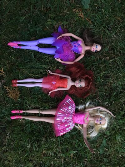 The plastic trio Plastic Doll EyeEm Selects Purple No People Nature Field Plant High Angle View Land Directly Above Multi Colored Grass Close-up Day Outdoors Representation My Best Photo