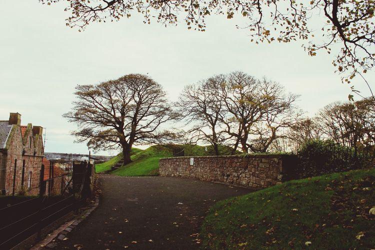 Berwickupontweed Berwick Walls Northumberland Autumn Autumn Leaves Tranquil Scene No People Old Buildings