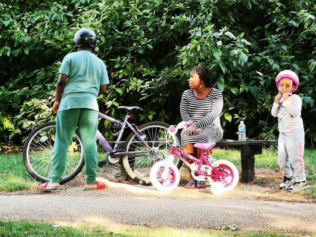 Mum And Children, Bicycle Summer Bike Path Summer Rides Tree Childhood Full Length Togetherness Friendship Child Fun Girls Rear View Boys Children Park - Man Made Space Blooming Playground Growing