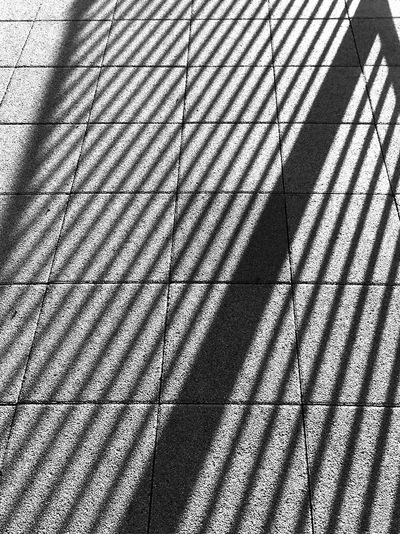 shadow B&w