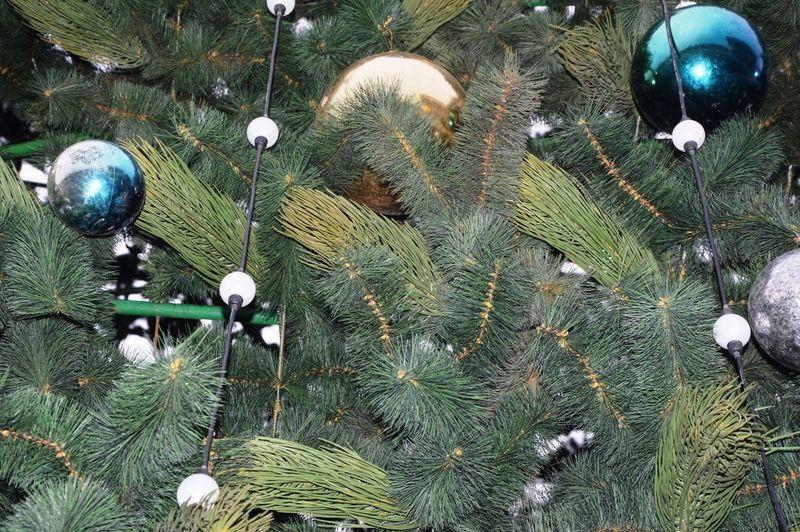 High angle view of christmas decoration hanging on tree