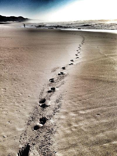 Landscape Sunshine Footprints